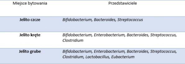 mikroflora jelit