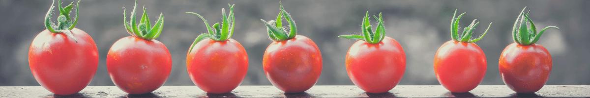 zdrowe-przekaski-na-plaze-pomidorki