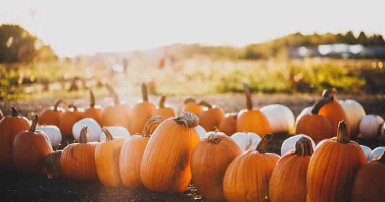 Zdrowa dieta na jesień – Jak wykorzystać tą porę roku?